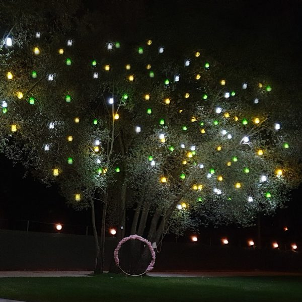 Alaçatı Ağaç Aydınlatma Feneri Armatürü